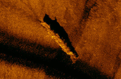 Possible Grunion Sonar Image